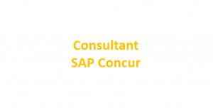Projektmanager SAP Concur