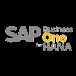 SAP B1 HANA